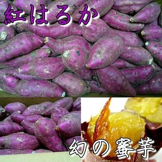 tori☆様専用 紅はるか約10kg(野菜)