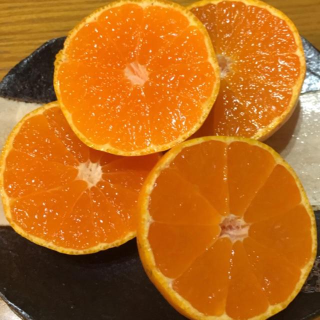 ソニーさん専用 無選別5キロ 徳島 食品/飲料/酒の食品(フルーツ)の商品写真