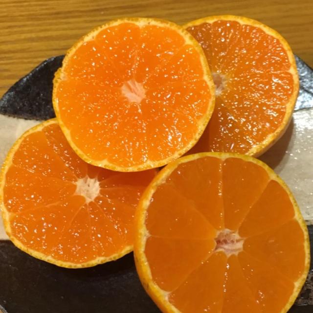 いよかんさん専用 無選別 5キロ 食品/飲料/酒の食品(フルーツ)の商品写真