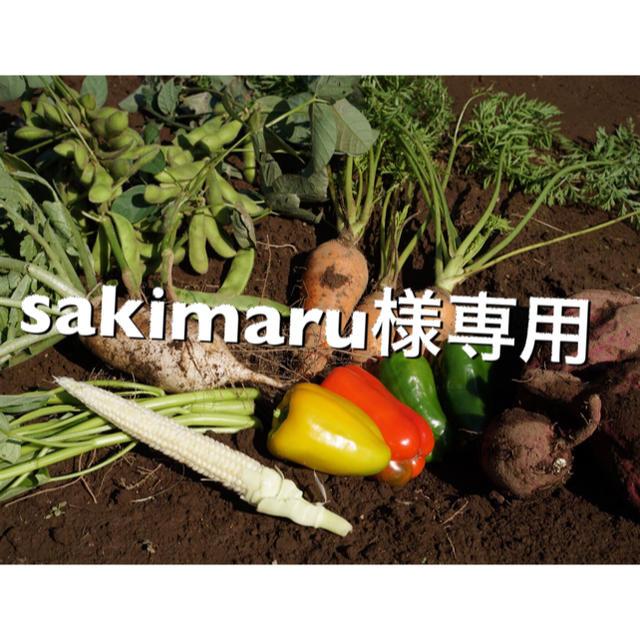専用です 食品/飲料/酒の食品(野菜)の商品写真