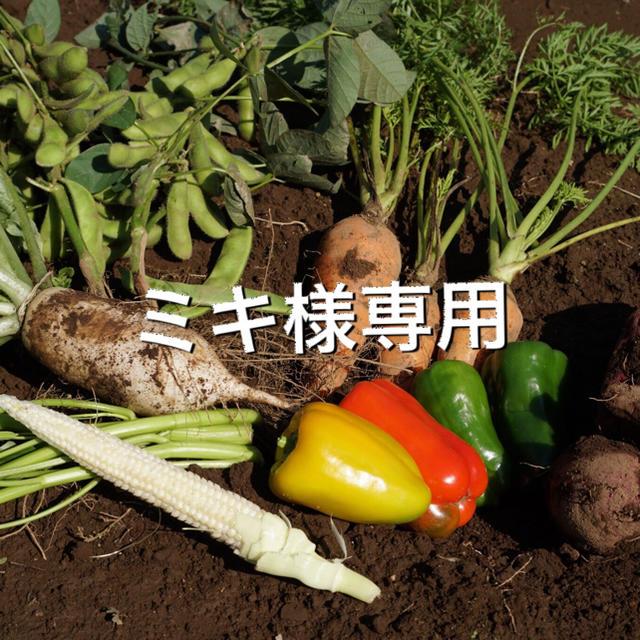 ミキ様専用 食品/飲料/酒の食品(野菜)の商品写真