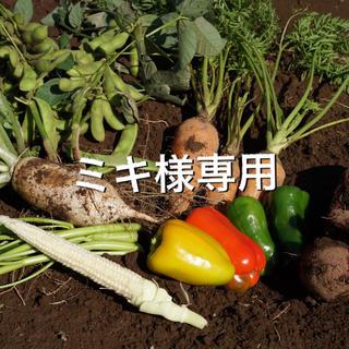 ミキ様専用(野菜)