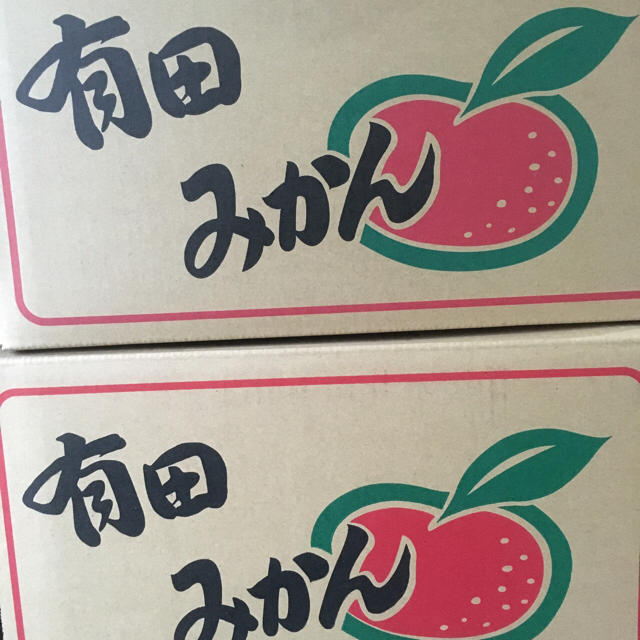 和歌山県 キズあり訳ありみかん10Kg 食品/飲料/酒の食品(フルーツ)の商品写真