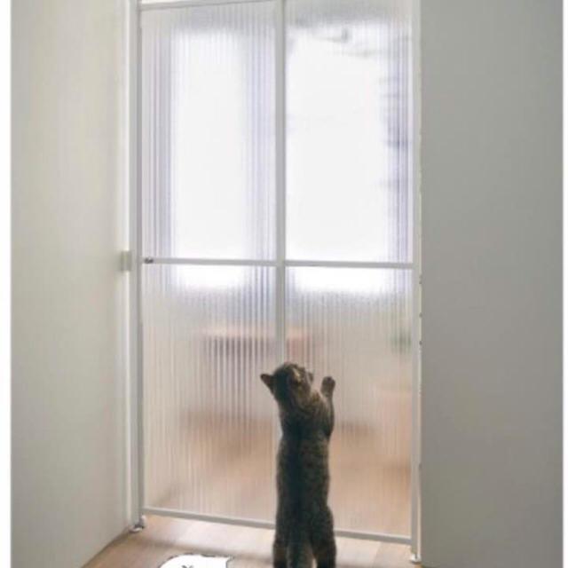 防止 猫 脱走