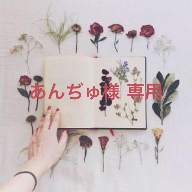 あんぢゅ様 専用 ハンドメイドのアクセサリー(ピアス)の商品写真