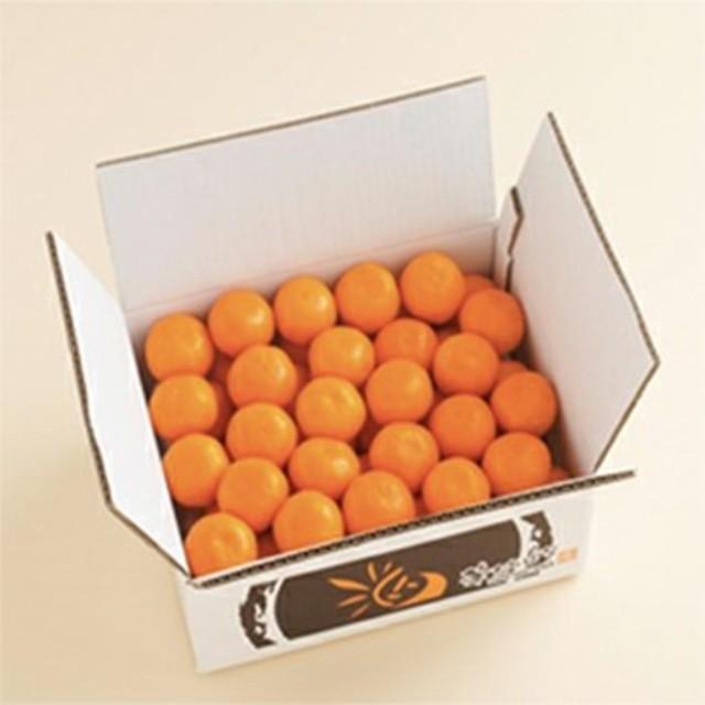 華たちばな「みかん」(5㎏) L~Mサイズ 食品/飲料/酒の食品(フルーツ)の商品写真