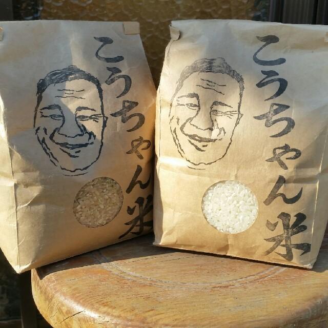 コシヒカリ 精米3キロ 食品/飲料/酒の食品(米/穀物)の商品写真