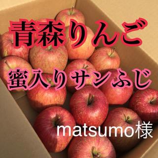 りんご 果物 訳あり サンふじ 青森りんご 安心素材(フルーツ)