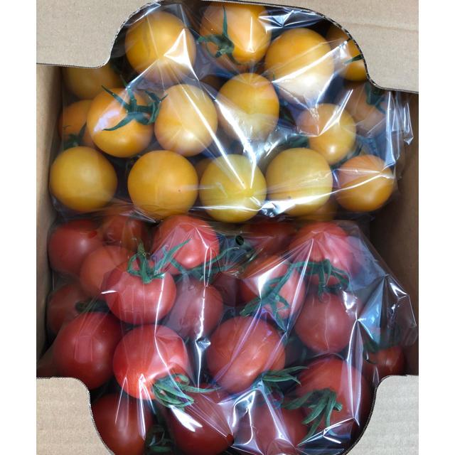 POM様専用 2キロ 食品/飲料/酒の食品(野菜)の商品写真