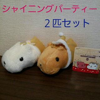 【新品未使用】カピバラさん&ホワイトさんマスコットぬいぐるみセット(その他)
