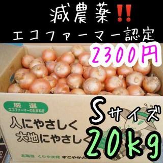 北海道産 減農薬 玉ねぎ Sサイズ 20キロ(野菜)