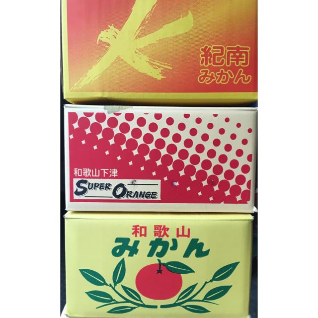 和歌山県  傷ありワケありみかん10Kg 食品/飲料/酒の食品(フルーツ)の商品写真