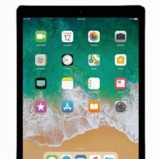 アップル(Apple)の専用出品 ipad pro10.5グレー 256GB simフリーモデル 5台(その他)