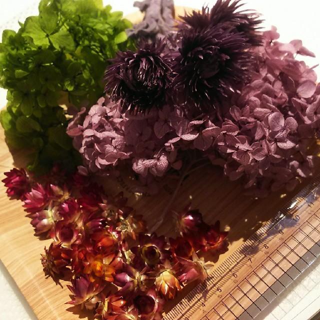 花材セット① アジサイ 紫緑  ハンドメイドのフラワー/ガーデン(ドライフラワー)の商品写真