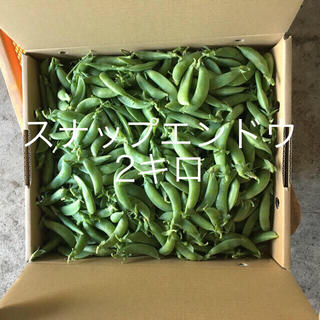鹿児島産スナップエンドウ2キロ^_^(野菜)