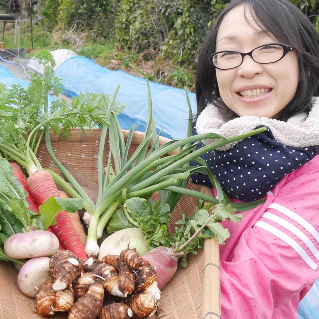 【今なら白菜入っています♪】渥美半島から直送!旬彩野菜バスケット【M】 食品/飲料/酒の食品(野菜)の商品写真