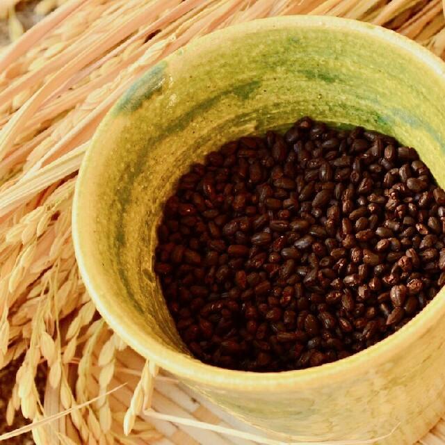 米糠カンパーニュ&玄米珈琲セット 食品/飲料/酒の加工食品(その他)の商品写真