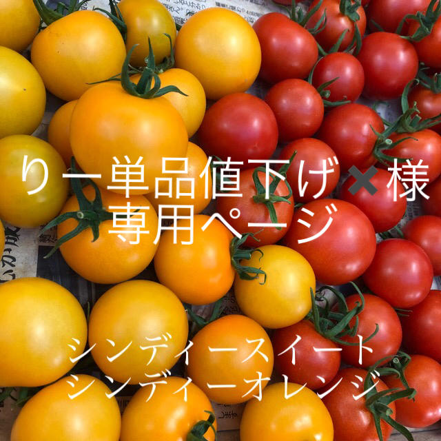 りー単品値下げ✖️様専用  1キロ 食品/飲料/酒の食品(野菜)の商品写真