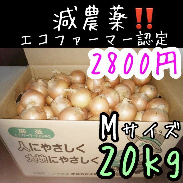 北海道産 減農薬 玉ねぎ Mサイズ 20キロ 食品/飲料/酒の食品(野菜)の商品写真