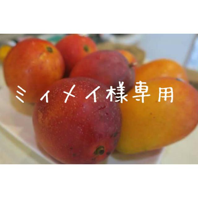 ミィめい様専用ドライマンゴードライドラゴンフルーツ 食品/飲料/酒の食品(フルーツ)の商品写真