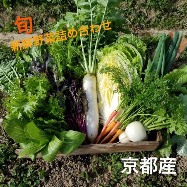 16日収穫、発送!無農薬⚫︎減農薬野菜詰め合わせ 食品/飲料/酒の食品(野菜)の商品写真