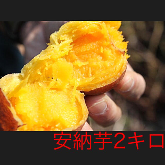安納芋2キロ(鹿児島県種子島産)即購入ok 食品/飲料/酒の食品(野菜)の商品写真