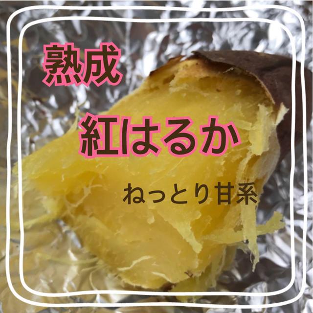 翔蓮さま専用ページ 食品/飲料/酒の食品(野菜)の商品写真