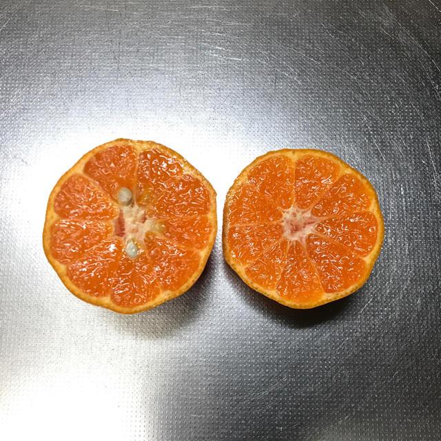 愛媛県産 訳あり完熟ポンカン 4.5キロ 食品/飲料/酒の食品(フルーツ)の商品写真