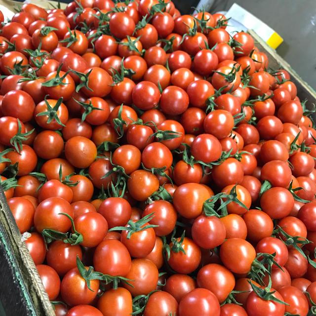 ヘタ付きミニトマト2kg 食品/飲料/酒の食品(野菜)の商品写真