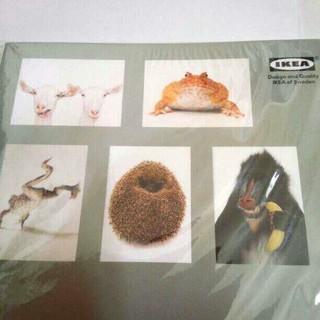 イケア(IKEA)のIKEA 大きめポストカード アニマル 封筒付き(その他)