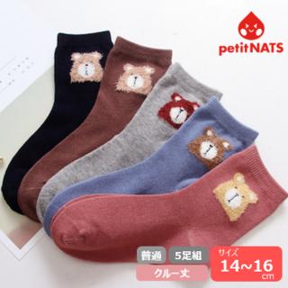 petitnats❤ふわふわくまさん《14〜16cm》5足組新品〔CP11-S〕(靴下/タイツ)