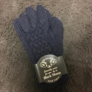 ジャーナルスタンダード(JOURNAL STANDARD)のジャーナルスタンダード/手袋(手袋)