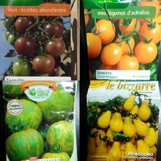 4種1~2月蒔き イタリア野菜の種子など。カラフルなトマトの種 4種類10粒ずつ(野菜)