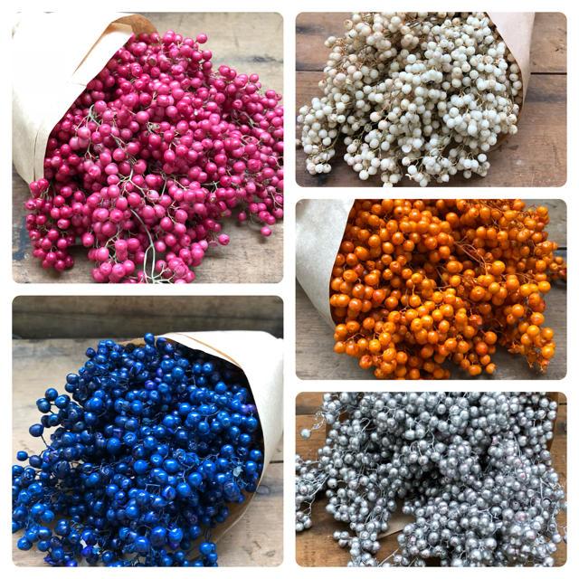 選べる11色♡ペッパーベリー♡素材♡ドライフラワー♡ハーバリウム♡ ハンドメイドのフラワー/ガーデン(ドライフラワー)の商品写真