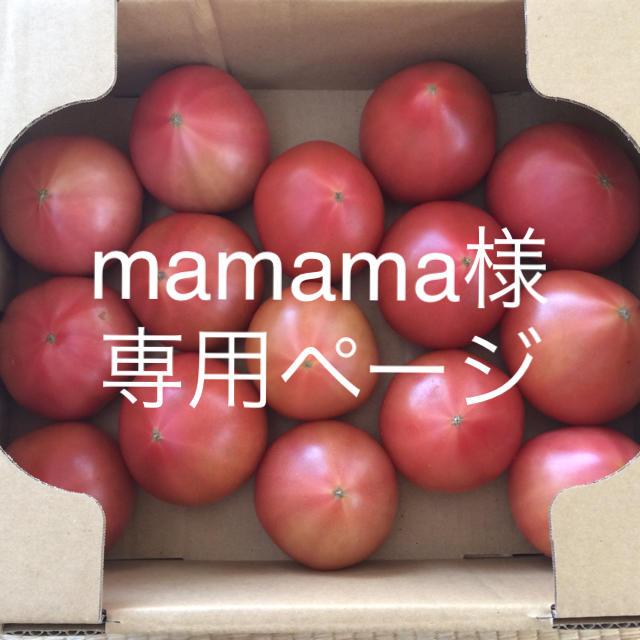 mamama様専用 食品/飲料/酒の食品(野菜)の商品写真