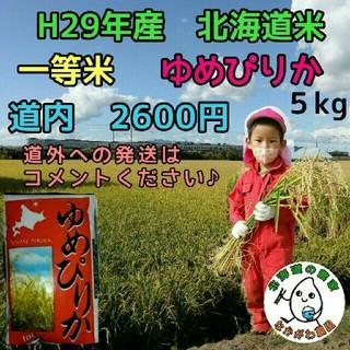 農家直売 北海道米 ゆめぴりか 5kg 29年産(米/穀物)