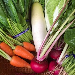 あんぱーね様専用 野菜 詰め合わせ セット 80サイズ 無農薬(野菜)