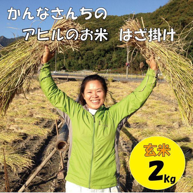 【アヒルのお米・はざ掛け】平成29年度岡山県備前市産2㎏(玄米) 食品/飲料/酒の食品(米/穀物)の商品写真