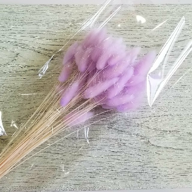 ハーバリウム ★ ドライフラワー ★ ラグラス ★ ラベンダー ハンドメイドのフラワー/ガーデン(ドライフラワー)の商品写真