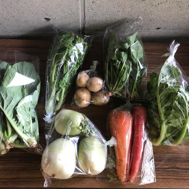 【peimonさま専用】渥美半島から直送!旬彩野菜バスケット【S】 食品/飲料/酒の食品(野菜)の商品写真