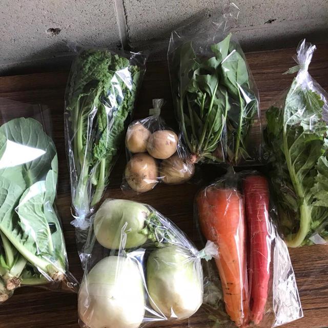Airan☆さま専用旬彩野菜バスケット【S】 食品/飲料/酒の食品(野菜)の商品写真