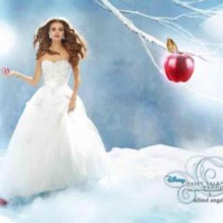 ディズニー(Disney)のDisney Snow White ウエディングドレスアルフレッドアンジェロ(ウェディングドレス)