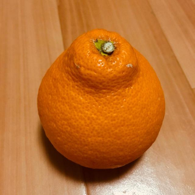 【残り1箱】完熟早生みかん 食品/飲料/酒の食品(フルーツ)の商品写真