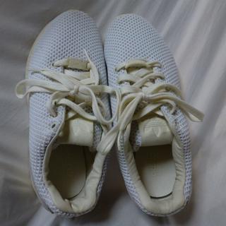 アディダス(adidas)のアディダスadidasスニーカーTORSIONトルション白37.5メッシュ23㎝(スニーカー)