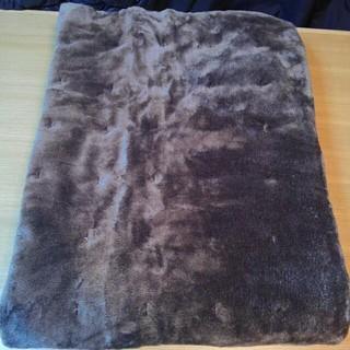 ムジルシリョウヒン(MUJI (無印良品))の廃盤 無印良品 あたたかファイバー吸湿発熱二浴染敷パッドS ブラウン(その他)