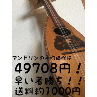 マンドリン 新しい弦交換済みに☆ 本体のみ♪(マンドリン)