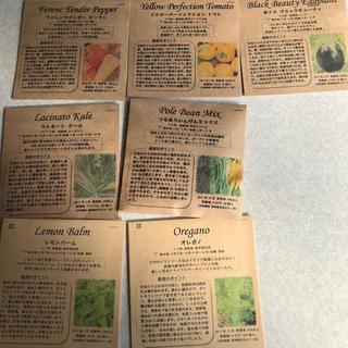 家庭菜園、固定種、種、春野菜(野菜)