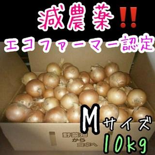 北海道産 減農薬 玉ねぎMサイズ 10キロ(野菜)