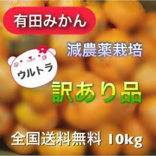 ミスチバス様専用【有田みかん】減農薬 モリ・カケ・スパ・ブラックボックス(フルーツ)