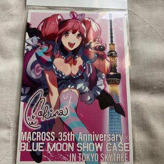 マクロス(macros)のマクロス BLUE MOON SHOW CASE ポストカード マキナ(その他)